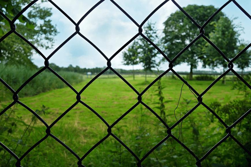 Оградна мрежа