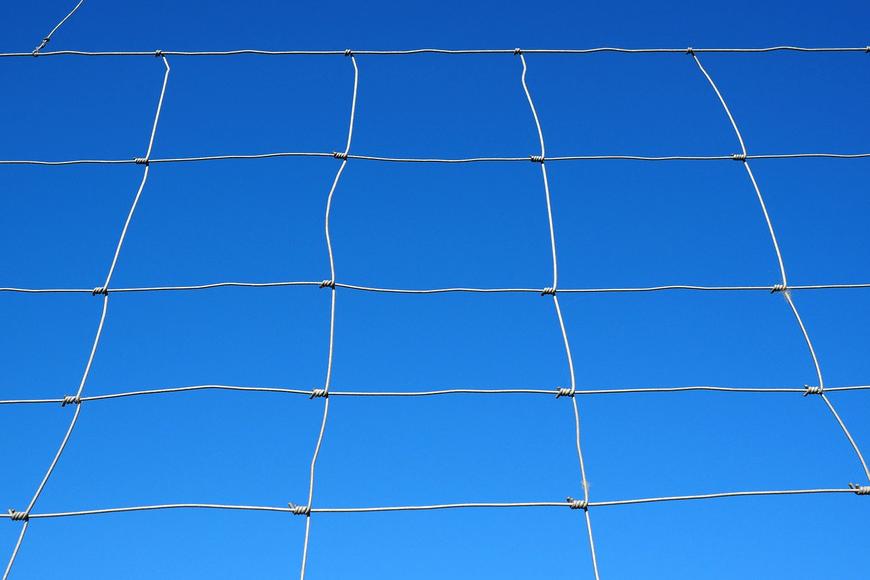 Магистрална мрежа